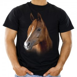 Koszulka męska z głową konia