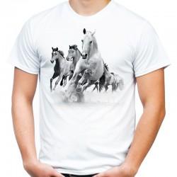 koszulka męska z końmi