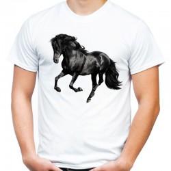 koszulka męska z koniem