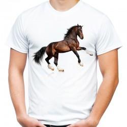 koszulka męska z brązowym koniem