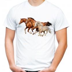 koszulka męska z tabunem koni