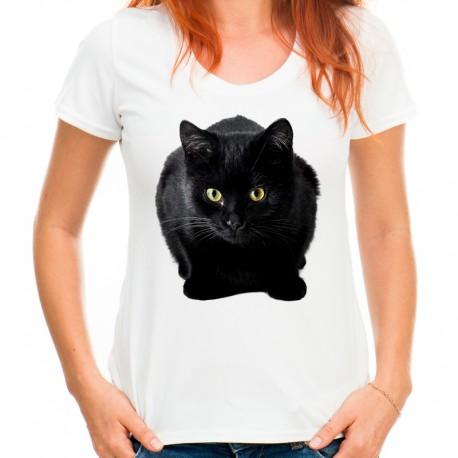 bluzka z czarnym kotem