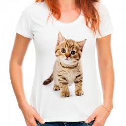 t-shirt damski z kotem KT006