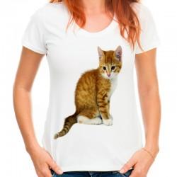 t-shirt damski z kotem KT007