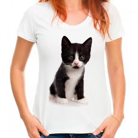 t-shirt damski z kotem KT008