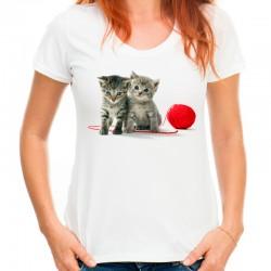 koszulka z kotami