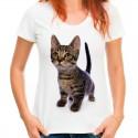koszulka z szarym kotem