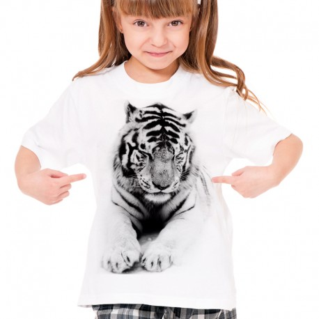 koszulka z kotem