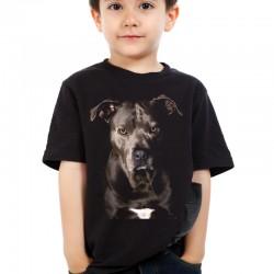 Koszulka dziecięca z Amstaffem