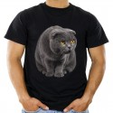 Koszulka męska z kotem