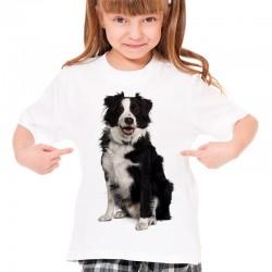 Koszulka z psem Collie