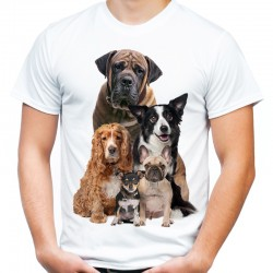 Koszulka męska z Dalmatyńczyk