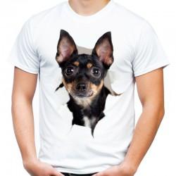 Koszulka męska z Rottweilerem