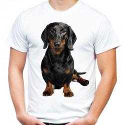 Koszulka męska z Pinczerem