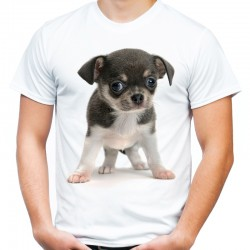 Koszulka męska z Buldogiem