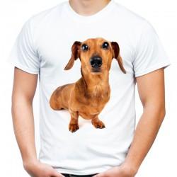 Koszulka  z Jamnikiem