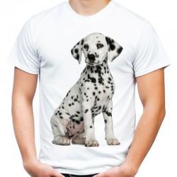 Koszulka męska z Dalmatyńczykiem