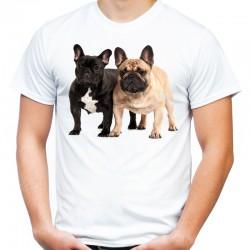 Koszulka męska z Buldogiem Francuskim