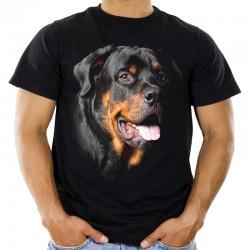 Koszulka Rottweiler