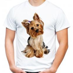Koszulka z yorkiem