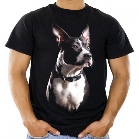 Koszulka staffordshire bull terier