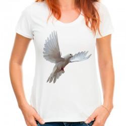 koszulka z gołębiem