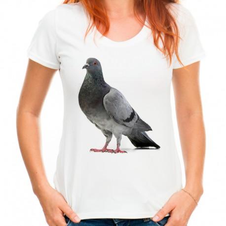 t-shirt z gołębiem