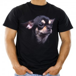 Koszulka z psem Chihuahua