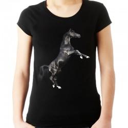 Bluzka z koniem