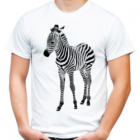 T-shirt z zebrą