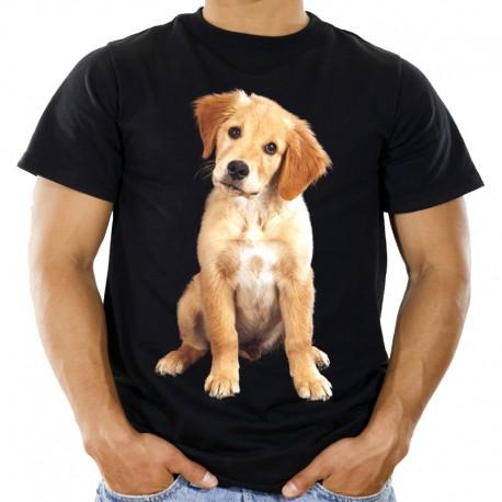 Koszulka z Golden Retriverem