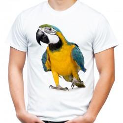T-shirt z papugami