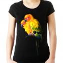 koszulka damska z papugą