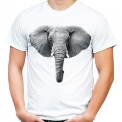Koszulka ze słoniem