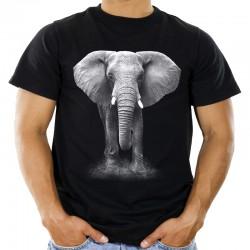 Koszulka z nadrukiem słonia
