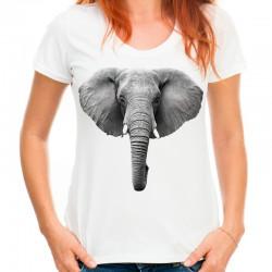 Koszulka damska ze słoniem
