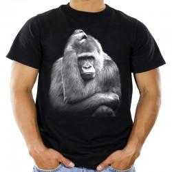 Koszulka męska z szympansem