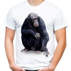 Koszulka z małpą