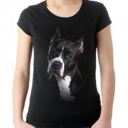 koszulka z bulterierem damska