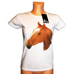 Koszulka damska biała z Koniem
