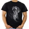Koszulka z psem bokserem