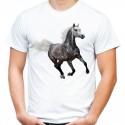 koszulka jeździecka z koniem