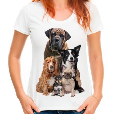 koszulka damska z psami