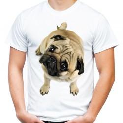 Koszulka męska z Mopsem
