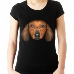koszulka z psem  Jamnikiem