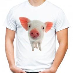 Koszulka ze Świnką