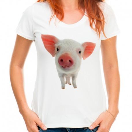 Koszulka z prosiaczkiem