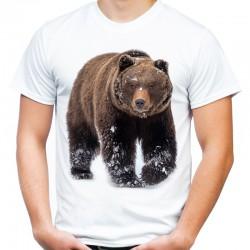koszulka z niedźwiedziem