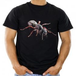 Koszulka z mrówką