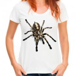 Koszulka z pająkiem Tarantula
